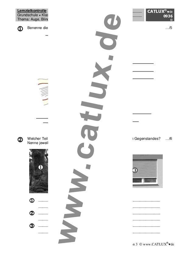 ▷ Proben Sachkunde / HSU Klasse 3 Grundschule | Catlux