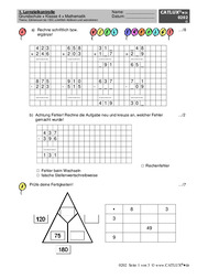 proben grundschule klasse 4 mathematik catlux. Black Bedroom Furniture Sets. Home Design Ideas
