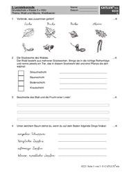 Proben Klasse 3 Grundschule Wald Catlux