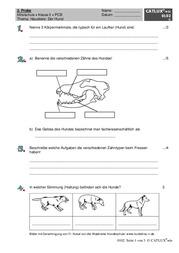 Lernzielkontrolle/Probe PCB Haustier: Hund (Mittelschule Klasse 5 ...
