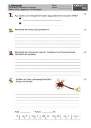 Biologie arbeit klasse 9 nervensystem masterarbeit online verkaufen